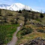 hummocks-trail