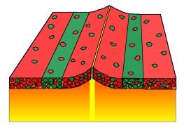 Langs de oceaanruggen spreekt het gedetailleerde patroon van magnetische polarisatie, met eilanden van verschillende polariteit, over snelle veranderingen in de richting van het magnetisch veld van de aarde vanwege de koelsnelheid van de lava.Dit komt overeen met een jonge aarde.