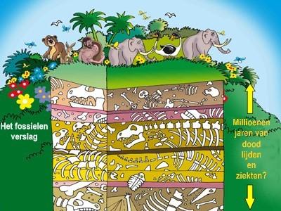 Fossielen en schepping