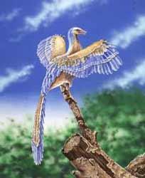 Artistieke weergave van Archaeopteryx