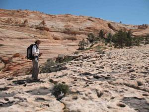 Geoloog Winston Seiler van de Universiteit van Utah loopt langs de honderden pootafdrukken van dinosauri?rs.