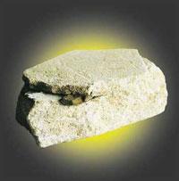 Fossiel hout ter grootte van een vinger, ondekt in een Hawkesbury zandsteenplaat