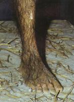 Lucy's voet reconstructies
