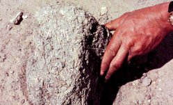 Baksteen van modder vermengd met stro