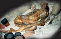 Een gedroogde mummie