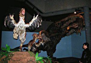 Gevederde modellen van deinonychus met op de achtergrond een therizinosaurus.